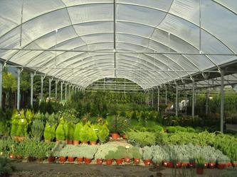 Viveros-Don-Pedro-productos-para-la-jardineria-3_image