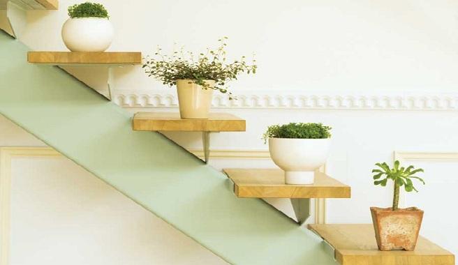 10 motivos por los que tener plantas en casa viveros don for Plantas decorativas para el hogar