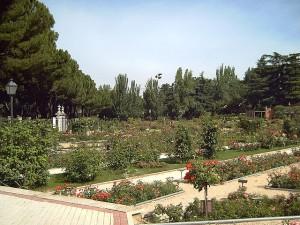 640px-Rosaleda_del_Parque_del_Oeste_(Madrid)_09
