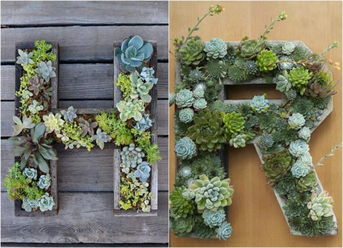 jardines-suculentas-funciones-cajeros